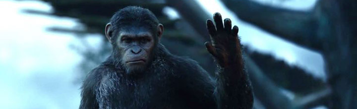 Dawn of the Planet of the Apes home